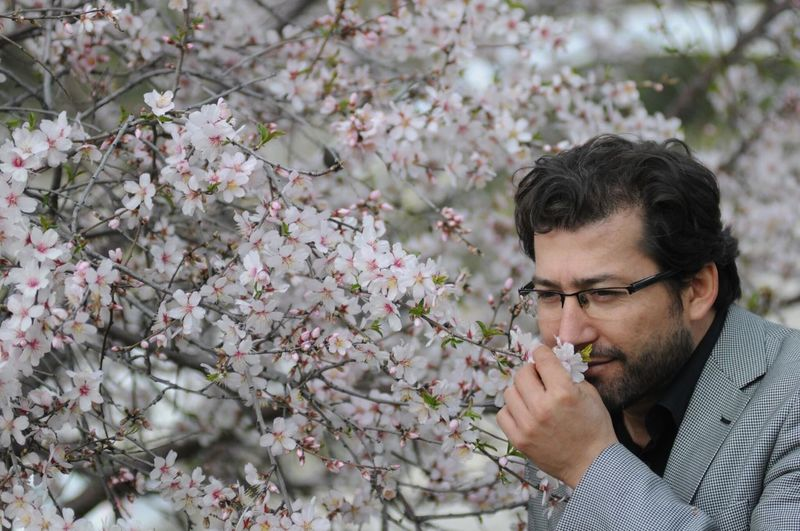 Close-up of businessman smelling almond tree