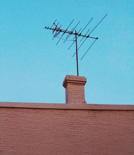 Antenna Antenna Array Mintgreen Bricks Brick Wall Brickwall Television Aerial Television Tower Televisionset First Eyeem Photo