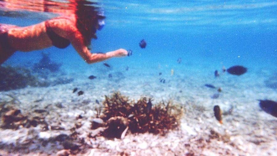 Maldives Sea Fish Girls