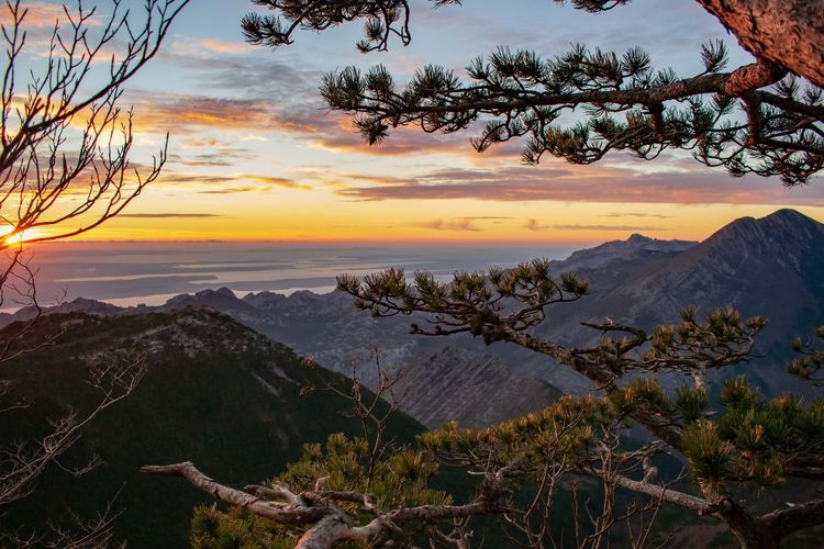 Midlleearth in Croatia. Nature Photography Nature Croatia Wilderness Clouds And Sky Golden Hour Sunset Tree Mountain Sunset Beauty Climbing Water Forest Above