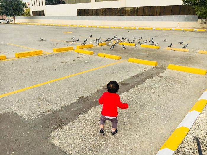 Rear View Of Baby Boy Walking On Road