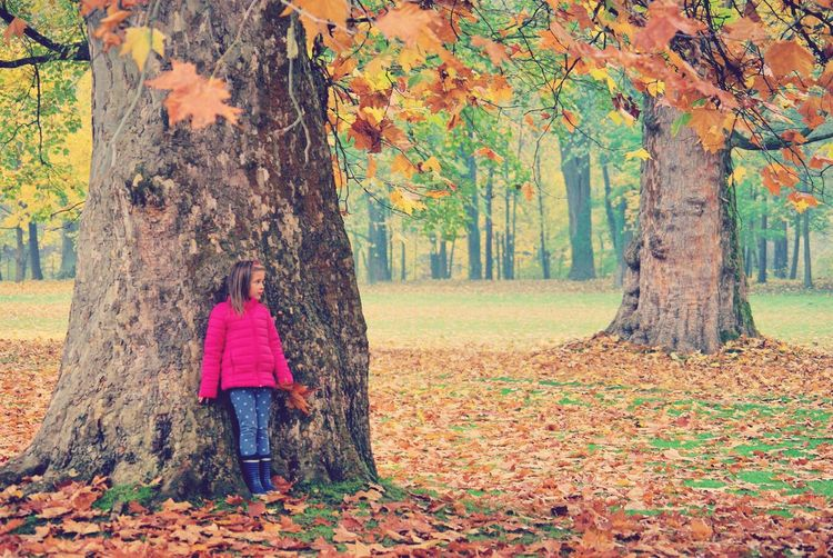 Girl standing by tree trunk at park during autumn