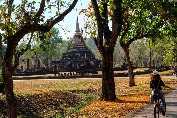 Elephant chedii Tree Built Structure Architecture Travel Destinations Outdoors Spirituality Real People Day Nature Place Of Worship Grass One Person Sky People Archaeology Thailand Thailand_allshots History Clear Sky Blue Archaeological Sites Sculpture Spirituality Cloud - Sky Sunset