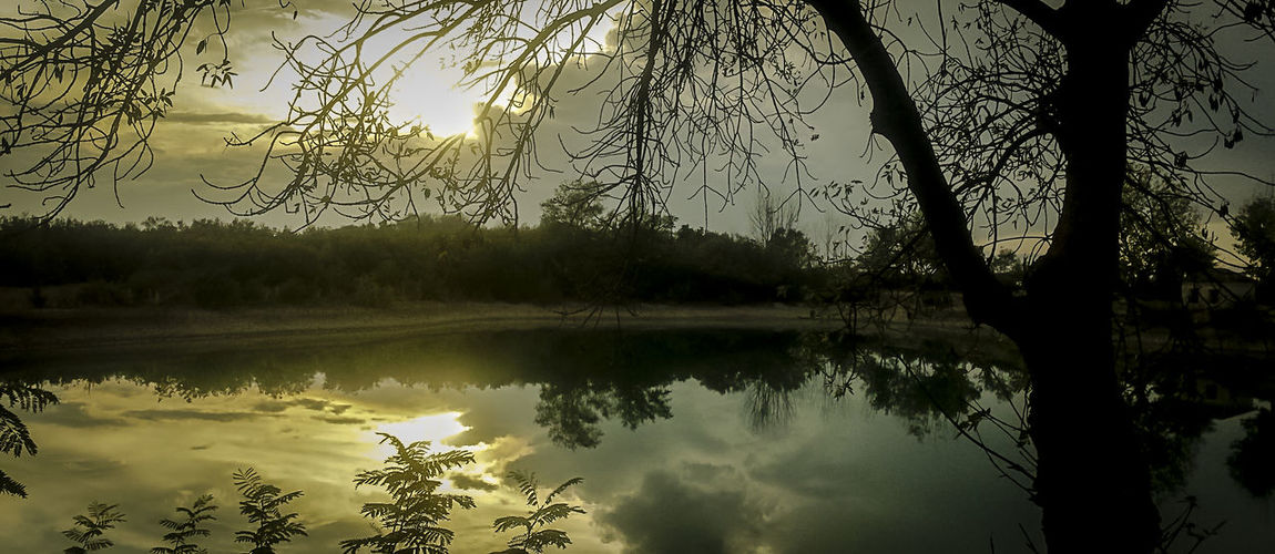 Baeza Beauty In Nature Branch Day Growth La Laguna Baeza Lake Nature No People Outdoors Puente Del Obispo Reflection Scenics Sky Tranquil Scene Tranquility Tree Water
