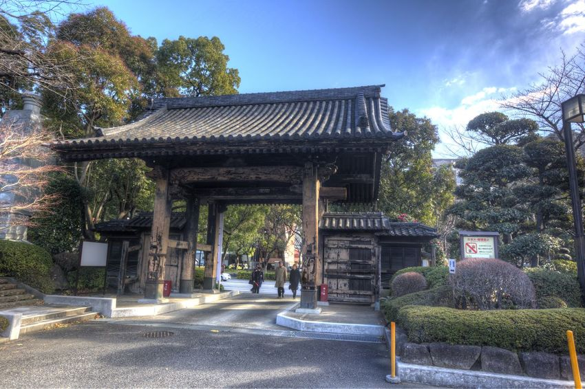 Japanese Temple Pagoda Architecture Asian Temple Building Exterior Built Structure Day Nature No People Outdoors Religion Roof Sky Temple Tree
