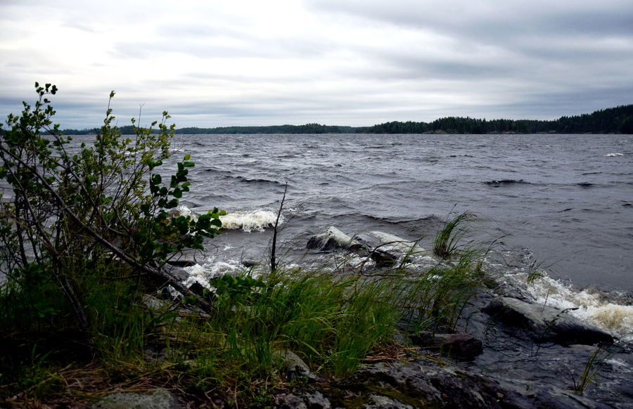 Lake Saimaa, Finland Finland Stormy Weather Beauty In Nature Day Grass Lake Lake View Nature No People Outdoors Plant Saimaa Scenery Scenics Sea Sky Stormy Tranquil Scene Tranquility Tree Water Wave Waves