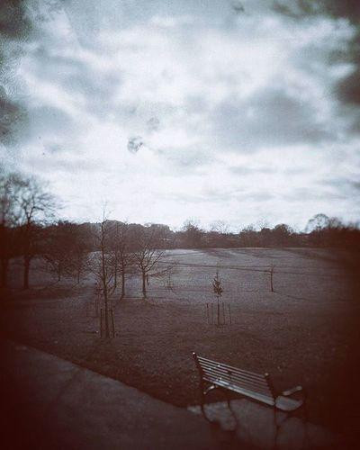 Solitude (Day 92 of 366) Park Moody Nickblak
