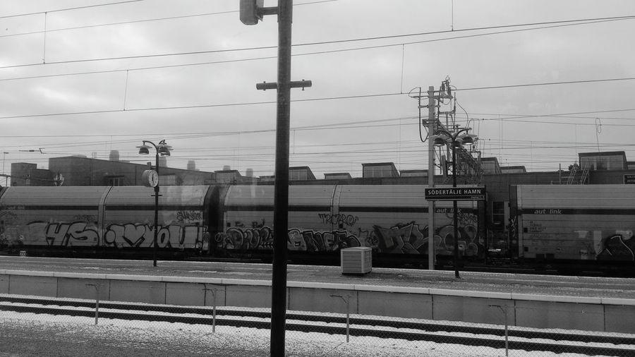 Early Morning Public Transportation Black & White