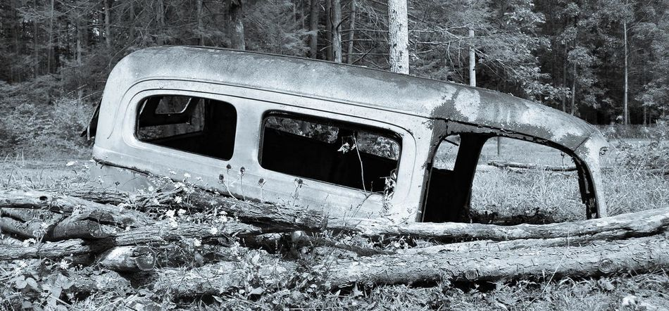 Abandoned Bad Condition Crash Damaged Day Destruction Nature No People Obsolete Old Ruin Outdoors Rotting Run-down Transportation Volkswagen Volkswagenbus