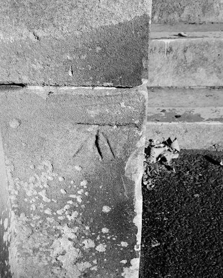 Stonework Survey_analysis