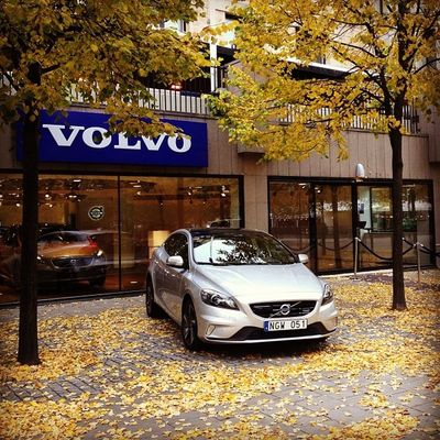 Beautiful autumn day @volvoshowroom? Volvocars V40 Crosscountry Brightsilver autumn volvoforlife