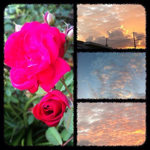 ...¡Buenos Días! Cada Nuevo Amanecer Encierra Retos Y Metas, Está En Manos De Valientes Concretarlos. @igpuertorico @igerspr @dominguea @brujulapr @la_respuesta_santurce #puertorico #igpuertorico #boricuas #boricua #amanecerborincano