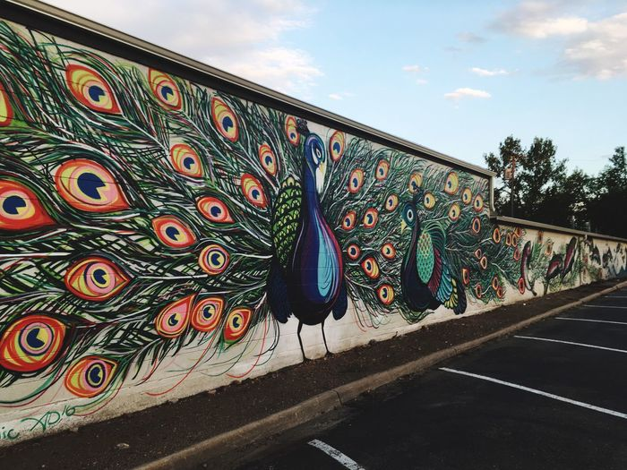 Multi Colored Pattern Outdoors No People Architecture Sky Art Mural Mural Art Peacock Bird Vivid Vivid Colours  Bright Colors Parking Lot Colorado Colorful Colorado EyeEmNewHere