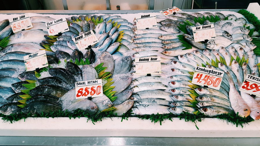 Large Group Of Objects Full Frame Fish Market Fish Market FishMarket Fishes Showcase Supermarket