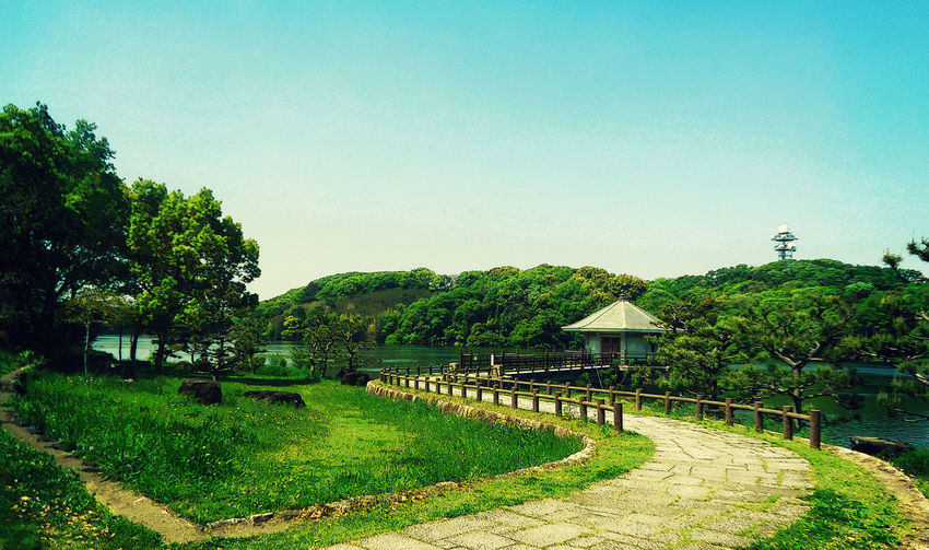 Architecture Beauty In Nature Built Structure Clear Sky Day Green Color Growth Nature No People Outdoors Sky Tranquility Tree こうえん 公園 山田園ち 山田園地 山田池こう