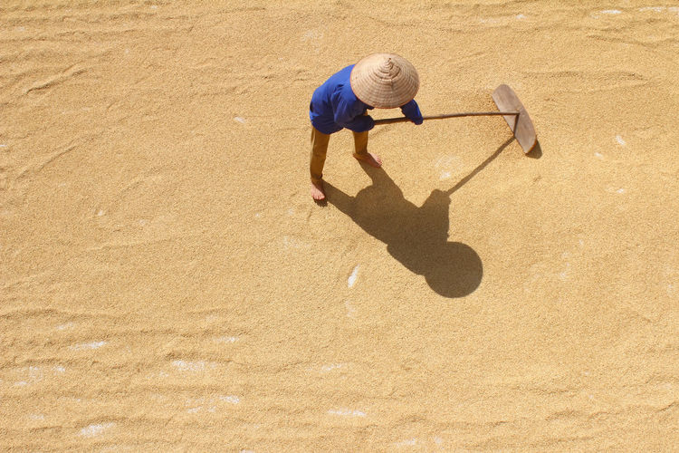 High Angle View Of Farmer Working On Harvested Grains