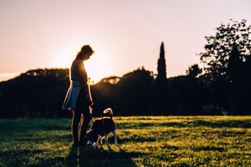 The Week On EyeEm Dog Sunset Pets One Animal Grass Domestic Animals Walking Nature Outdoors Silhouette One Person Lifestyles Tree Real People Field Full Length Leisure Activity Sky Clear Sky