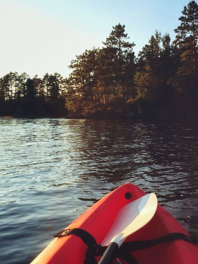 Water Lake Nature Boat Kayak Tranquility Day Outdoors Tranquil Scene Floating On Water Kayaking Lake Vermilion Peaceful Nature_collection No People Scenics Beauty In Nature Lake Life Exercise For The Day... Calm North Woods  Minnesota Nature Minnesota Pine Forest Island