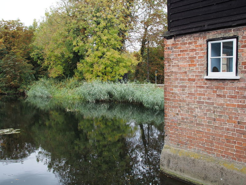 Autumn Brick Bricks Building Exterior Built Structure Day No People Outdoors Tree Water Window