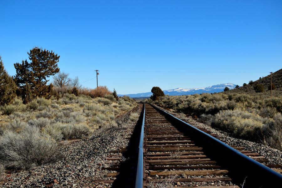 View down railroad tracks with mountains off in the distance. California Modoc County USA Alturas Beauty In Nature Blue Clear Sky Day Landscape Mountain Mountains Nature No People No People, Outdoors Outdoors Photograpghy  Rail Transportation Railroad Track Sky The Way Forward Transportation Tree