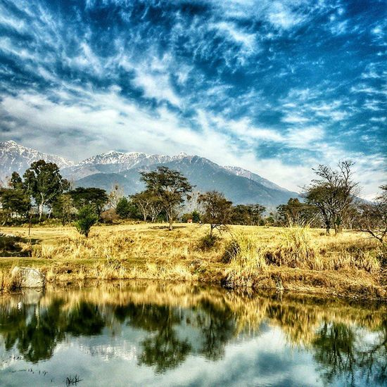 HDR Unreal Effect Landscape Palampur Cskhpkv Farm Himachalpradesh Nature Cloudporn Clouds Reflection Skyporn Bluesky Afternoon Click Inspiroindia Himachalpictures Mountains Dhauladhar Ranges Greenery Winters 2015  Discoverindia ourplanetdaily dreamland daily_himachal