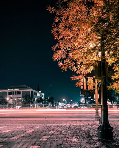 Tree Illuminated Night No People Building Exterior Road Architecture Outdoors Sky Nature