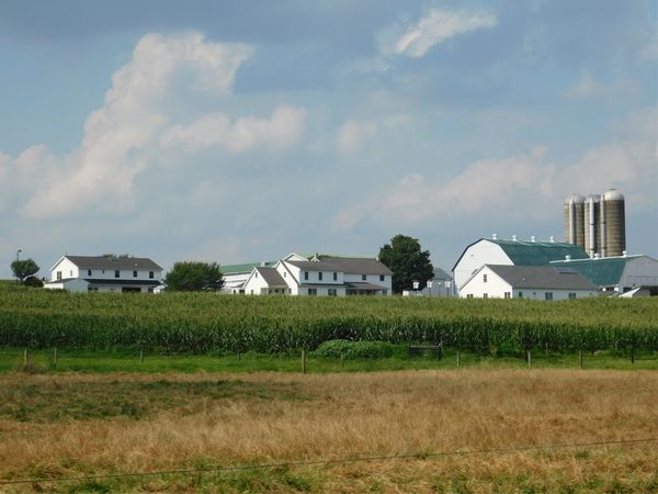 Architecture Built Structure Building Exterior Sky House Field Cloud - Sky Grass No People Day Landscape Outdoors Honey Brook Pennsylvania Pennsylvania Beauty Amish Nature