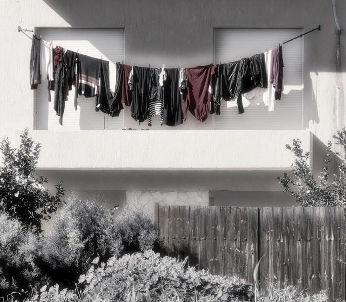 The washing line Washing, Washing Line, Balcony Architecture Clothesline Clothing Coathanger Day Drying Hanging No People Outdoors