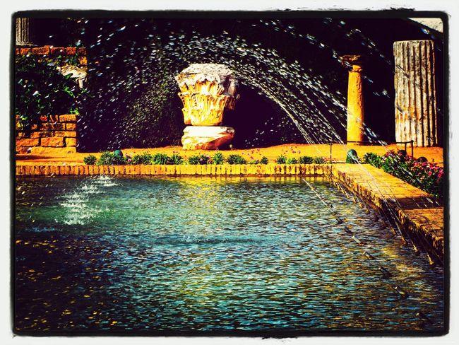 Tiremonos a la piscina! Eye4photography  Relaxing TheMinimals (less Edit Juxt Photography) Water