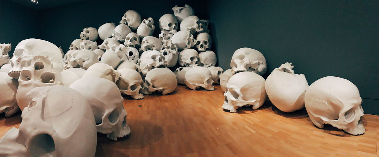 Panorama Art Bone  Close-up Creativity Exhibtion High Angle View Human Representation Human Skeleton Indoors  Large Group Of Objects Museum No People Still Life White Color