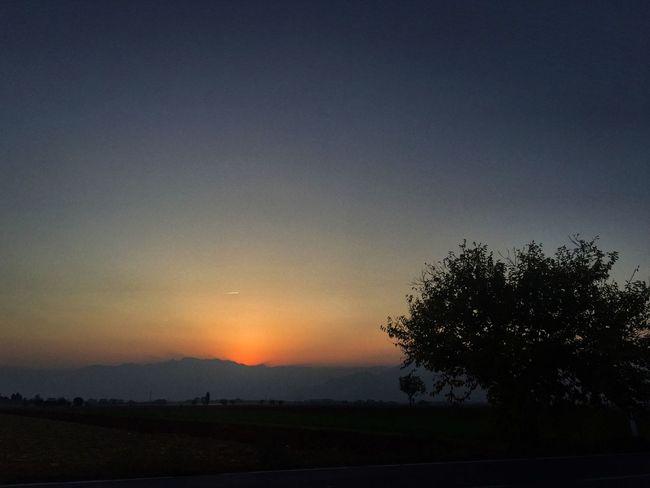 Vivo di sogni in un mondo imperfetto. E intanto fotografo attimi. Landscape Nature Scenics Sunset Beauty In Nature Tranquility Tranquil Scene Silhouette Tree No People Field Sky Outdoors Day