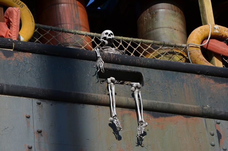 Low angle view of skeleton on ship