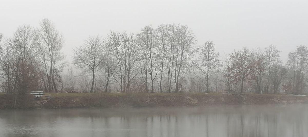 Tree Water Bare Tree Fog Lake Autumn Reflection Cold Temperature Winter Sky