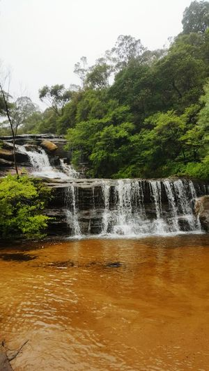 Wentworth Falls Top Falls Blue Mountains National Park Solo Adventure
