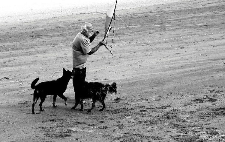 Barrilete Barrilete Villa Gesell Inchfoto Bnw_captures Bnw_collection Bnw Bnwphotography Bnwmood Fotoblancoynegro Argentina Full Length Men Sport Athlete Beach Sand Dog Pets Sea