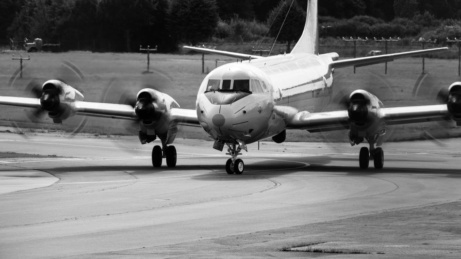 Lockheed P-3 Orion reconnaissance plane Lockheed Lockheed P-3 Orion Air Vehicle Airplane Airport Airport Runway Day Fighter Plane Marine Life Military Nature Navy Pier No People Outdoors Propeller Reconnaissance Rotation Runway Spotter Plane Transportation Travel