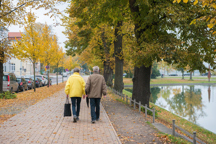 Back view couple walking in park in autumn Tree Plant Full Length Autumn Real People Rear View Nature Men Day Footpath Two People The Way Forward Walking Direction Change Water Togetherness Senior Adult Leisure Activity Yellow Outdoors Couple - Relationship