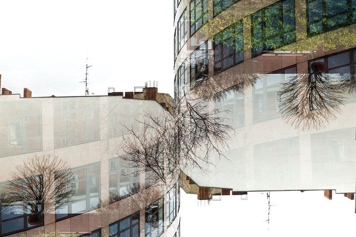 Trees Trees Double Exposure Nikon D600 Architecture Fantasy Berlin Urban Nature Concept Minimalobsession Experimental