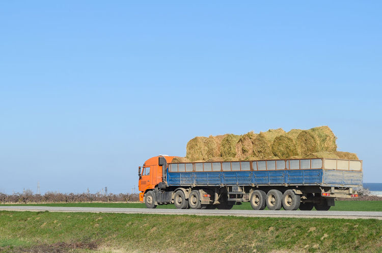 Truck carrying hay in his body. Making hay for the winter Agriculture Autumn Farming Food Grass Harvest Hauling Hauling Gear Hay Industry Load Outdoors Rural Season  Semitrailer Straw Strawberry Transportation Truck Trucks Work