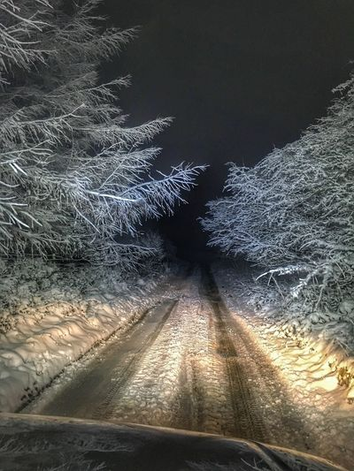 Offroad Singletrack Snow Covered Snowflake Snow ❄ Snow Drive Woodlands WoodLand Woods Nightphotography Night Transportation Glass - Material Road Transparent Windshield No People Nature Car Direction Sky Diminishing Perspective Car Point Of View Motor Vehicle Mode Of Transportation The Way Forward Land Vehicle
