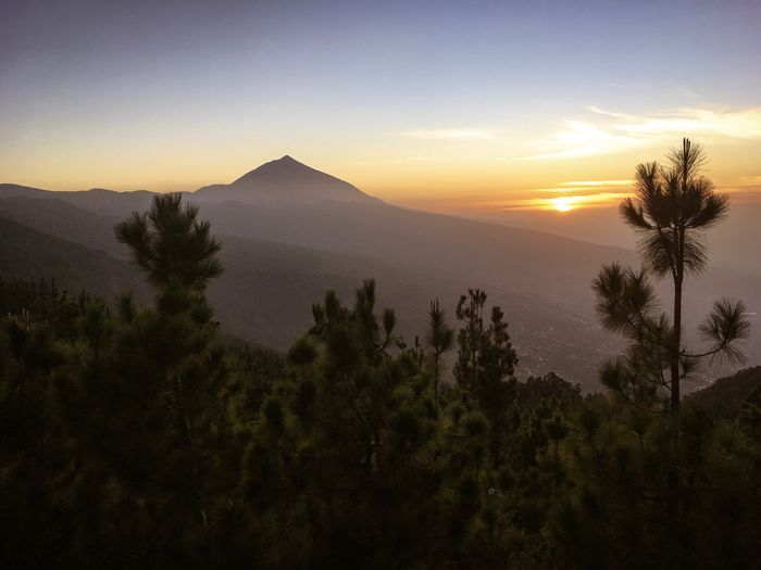 Volcano Teide at sunset, Tenerife, Canary Islands, Spain Travel Evening Nobody Tenerife Teide National Park Teide Volcano Tree Plant Sky Sunset Tranquil Scene Scenics - Nature Tranquility Beauty In Nature Non-urban Scene Mountain Nature Idyllic Silhouette Landscape