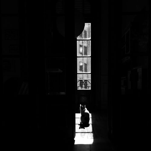 Architecture Building Built Structure Copy Space Dark Day Entrance Full Length Home Interior Indoors  Lifestyles Men One Person Real People Silhouette Sitting Sunlight Window