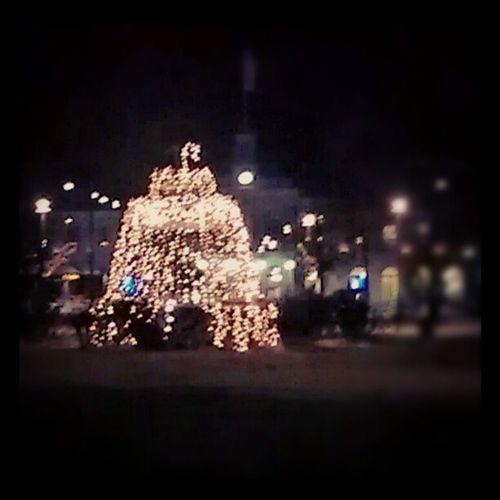 Fountain of lights Lights Fountain Carljohanspark Norrk öping Sweden winter christmas decorations december Xmas