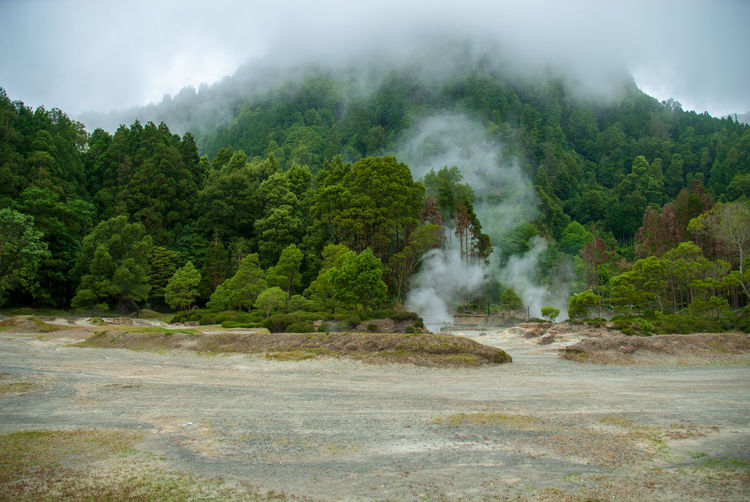 Caldera Forest Steam Hot Hot Spring Nature Tranquility Beauty In Nature Clouds Caldera Hot Water Mountain Water Smoke Smoke - Physical Structure No People Heat - Temperature Geology Environment Outdoors Scenics - Nature Power In Nature Azores Furnas