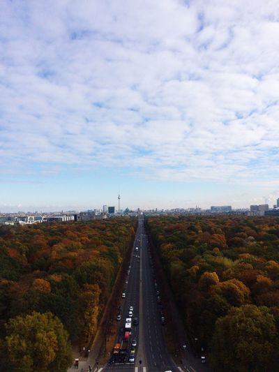 Autumn Colors Autumn Trees Road Mypointofview Ontopoftheworld Derhimmelüberberlin Mypoint Of View Siegessäule  Berliner Ansichten Berlin City Life