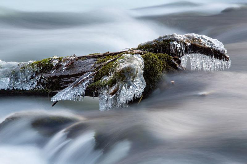 Winter Frozen River Ice Stream Moss Nature Cold Temperature