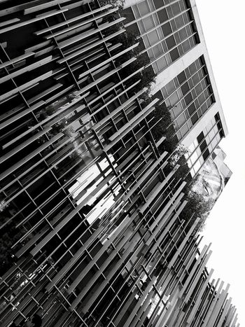 Day Outdoors Architecture Low Angle View No People Building Exterior Built Structure Backgrounds Close-up Full Frame Decoration Geometric Design Lines Wall Geometric Lines Abstract Photography EyeEm Best Shots EyeEmBestPics Smartphonephotography Panel Architecture Low Angle View Black & WhiteBlack Background Monocrome Design Black And White The Week On EyeEm Black And White Friday