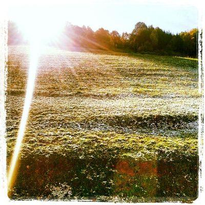 #ersterschnee #igensdorf #2012 #sonne #firstsnow #sunrise Igensdorf Ersterschnee Sunrise Sonne 2012 Firstsnow
