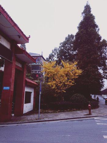 I am standing here,where are you? 望月湖 Changa Changsha 620