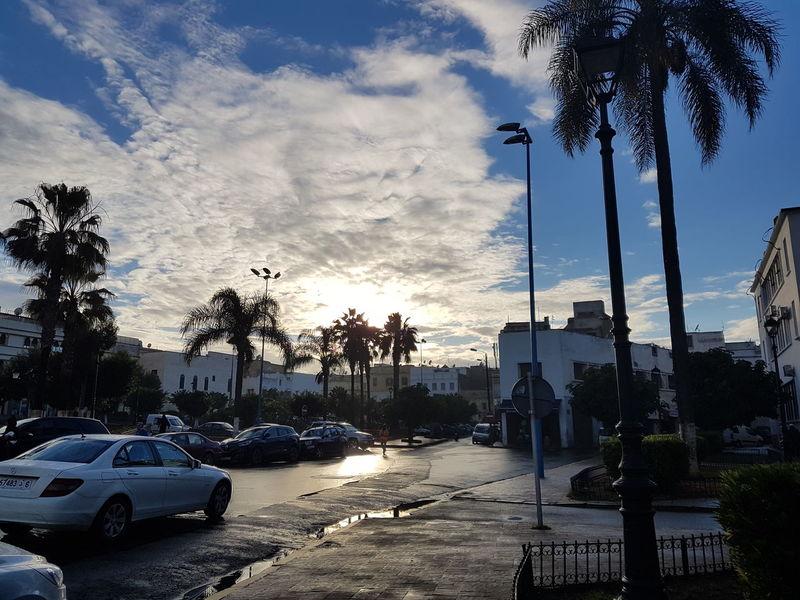 Cloud - Sky Sky Palm Tree Street Light Outdoors Day Marocco 2016